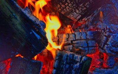 Was ist das innere Feuer? – Darshan mit OM C. Parkin