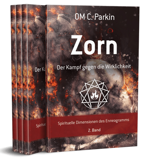 Zorn Buch Cover